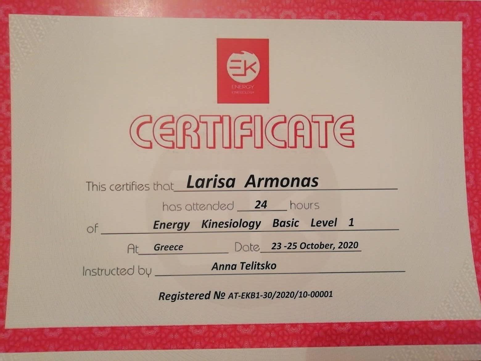 ENERGY KINESIOLOGY BASIC LEVEL 1